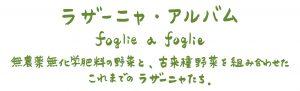 ラザーニャ・アルバム foglie a foglie 無農薬無化学肥料の野菜と古来種野菜を組み合わせたこれまでのラザーニャたち
